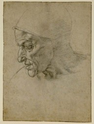 The Study of the Head of the Sibilla Cumana by Michelangelo